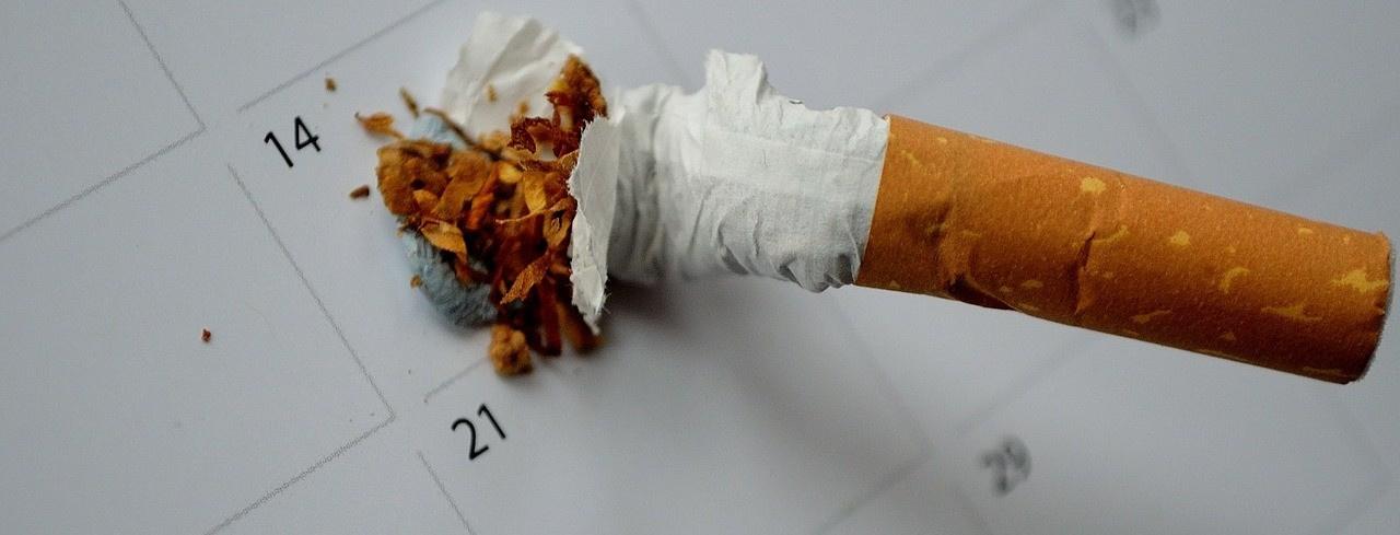 Табачные изделия златоуст купить сигареты бубль гум